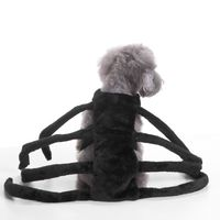 Dogs/Cat Halloween Spider Costume - Trends N Travel by Design