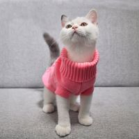 Warm Knitted Sweater for Puppy and Kitten
