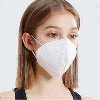 [N95 Face Mask] - Golden Tree Supply