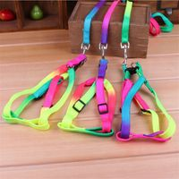 Colorful Rainbow Nylon Harness/Collar For Dogs