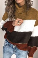 Chunky Knit Turtleneck Sweater.