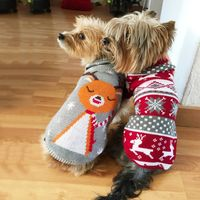Cartoon Puppy Dog Sweater Winter Warm Clothing for Small Dogs Christmas Costume Chihuahua Coat Knitting Crochet Cloth Jersey - The Good Pupper