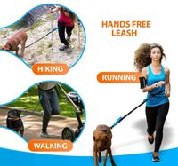Hands-Free Reflective Dog Bungee Leash.