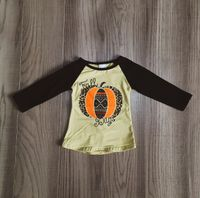 Fall Days Leopard print  Pumpkin Raglan