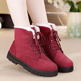 shoes woman Snow boots  warm fur plush Insole women winter boots  heels flock ankle boots women shoes - AMN-store