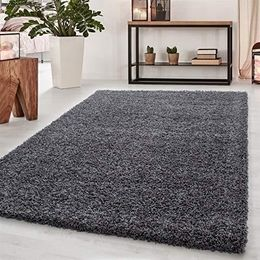 Abaseen Small Large Shaggy Modern Rug in 12 Different Colour and 4 Different Sizes - We Love Our Beds