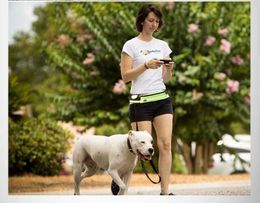 Hands-Free Reflective Dog Bungee Leash with Detachable Pouch.